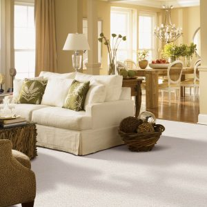 Gentle Approach of carpet | Warnike Carpet & Tile
