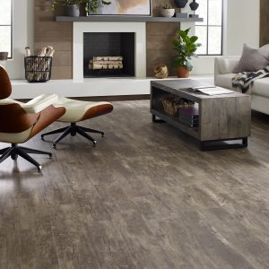 Paramount Plus | Warnike Carpet & Tile