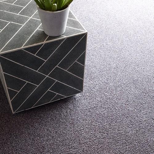 Comfortable carpet | Warnike Carpet & Tile