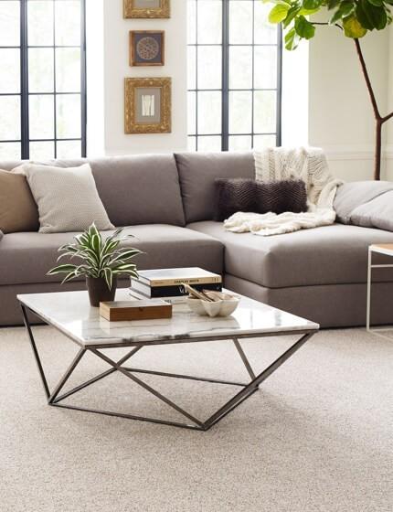 Shaw carpet | Warnike Carpet & Tile
