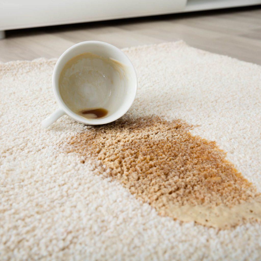 Professional Rug Cleaning | Warnike Carpet & Tile
